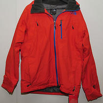 Winter Jacket the North Face   Photo