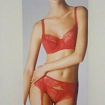 Wolford Stretch Lace Tulle Stocking Belt Size Xs in Lipstick Red New Boxed Sexy Photo