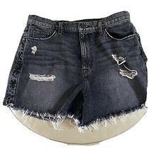 Woman Designer Hudson Brand Shorts Sade Cut Off Black Jeans Size 32 Nwot Photo