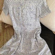Woman Dresses Photo