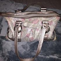 Woman Handbag  Photo