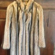 Woman's Fur Coat Excellent Sz M/l Fox or Raccoon Christie Brothers Abtuc Photo