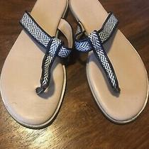 Woman's Size 8 Preowned the Limited Navy and White Sandals Photo