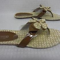 Womans Coach 'Pattey' Flower Thong Sandal Brown Size 11b Euc Photo