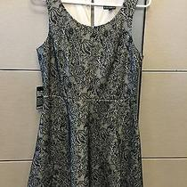 Womans Express Dress - Size Medium- Nwt Photo