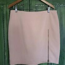 Womans New Size 14 Blush Pink Banana Republic Zipper Accent Skirt Photo