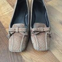 Womans Prada Shoes  Photo