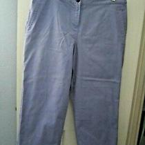 Womans Tommy Bahama Light Purple Stretch  Crop  Pants Sz. 10 Photo