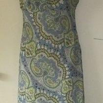 Women Bcbg Max Azria Casual Work Dress Size M Photo