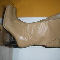 Women Boots New  Photo