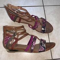 Women's Aldo Brown Cognac Purple Flats Size Us 8 Photo