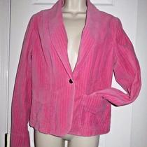Womens Ann Taylor Loft Bright Pink Velvet Velour Pinstripe Blazer Jacket Size 8 Photo