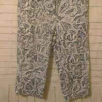 Women's Classic Elements Blue Patterned Capri Pants Size 10 Photo