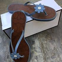 Women's Coach Blue Flower Sandal Size 8 Photo