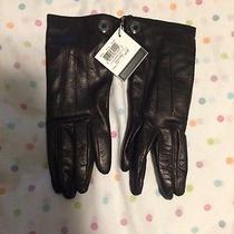 Women's Coach Driving Gloves Size 6 1/2 Photo