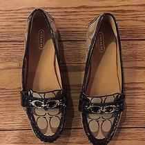 Women's Coach Loafers Photo