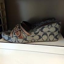 Women's Coach Sandals Size 7 1/2 - Authentic Photo