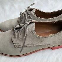 Women's Dv by Dolce Vita 'Mini' Taupe Suede Lace-Up Oxford Sz 8 (Fit Like 7.5) Photo