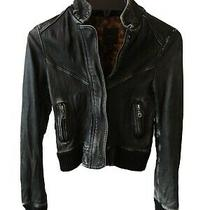 Women's Express 100% Leather Jacket Animal Print Lined Black Size Xs Read  Photo