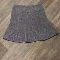 Women's Express Skirt Size 8 Knee Length  Photo