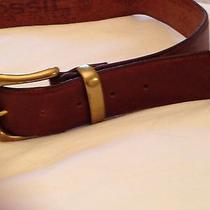 Women's Fossil Leather Belt. Photo