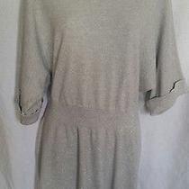 Women's Gray/silver Express Sweater Dress Size Medium Photo