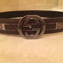 Women's Gucci Belt Photo