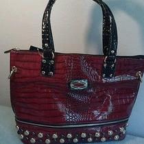 Women's Handbags  Photo