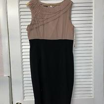 Women's Jones Wear Blush Black Ruffle Cocktail Dress  Size  14 Photo