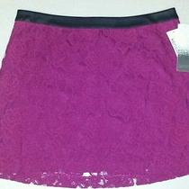 Women's Kensie Magenta Lace Dress Mini Skirt  Size 10  New  Spring  68 Photo