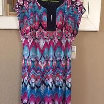 Women's Medium Dress by Laundry Nwt Photo