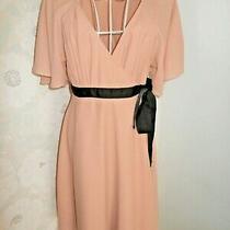 Women's Nude Chiffon Lined Vintage Style Tea Dress Size 38 Uk10 h&m Photo