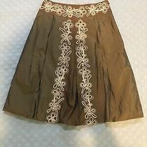 Womens Odille Anthropologie Lined Skirt 4 Photo