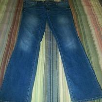 Women's Plus Size 18lmossimo Modern Bootcut Jeans Photo