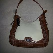 Women's Purses Photo