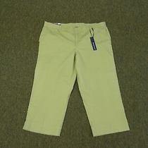 Women's Size 16 Sage Green Capri /cropped Pants by Bandolino Nwt Photo