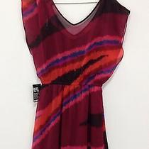 Women's Size Medium Express Dress Photo