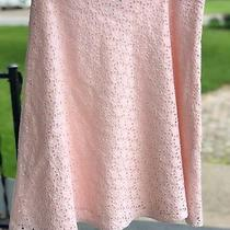 Women's Soft Pink Blush Pale Gap a-Line Eyelet Lined Skirt Size 6 Modest Small Photo