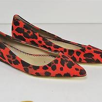 Women's Stella Mccartney Red Leopard Print Pointed Toe Flats Size 35 Us 5 Photo
