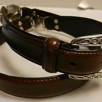 Women's Sz M Fossil Brown Leather Silver Accent Belt  Photo