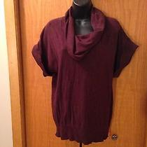 Women's the Limited Dark Purple Short Sleeve Sweater Size L Photo