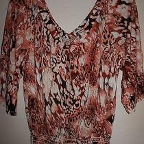 Women's Top  American Rag  Size Xl  New Without Tag   Macy's Photo