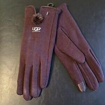 Womens Ugg Gloves Photo