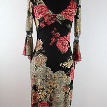 Women's Vintage Poet Victorian Vintage Dress Sz Small 2-4 Arden B. Shabby Chic Photo