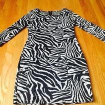 Women's Zebra Print Dress Photo