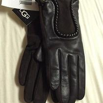 Women Ugg Gloves Medium Photo