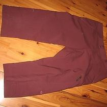 Womens 10 Columbia Titanim Cropped Capri Outdoors Pants Photo
