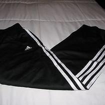 Womens Adidas Workout Pants Medium Athletic Wear Drawstring Mesh Outer Smooth  Photo