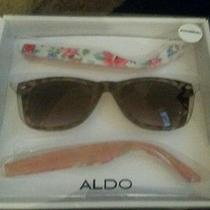Womens Aldo Interchangeable Sunglasses. New in Box. Photo
