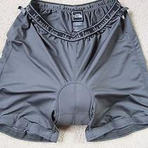 Womens Auth the North Face Biking Shorts Sz Large Photo